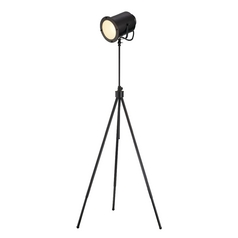 Lite Source Lighting Directeur Floor Lamp with Bowl / Dome Shade