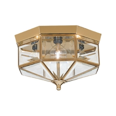 Flushmount Light with Clear Glass in Polished Brass Finish