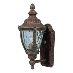 Outdoor Wall Light with Clear Glass in Earth Tone Finish