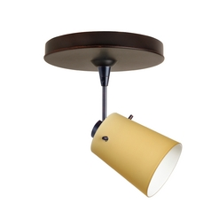 Modern Directional Spot Light in Bronze Finish