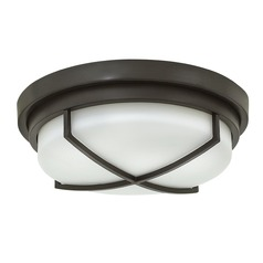 Hinkley Lighting Halsey Buckeye Bronze Flushmount Light