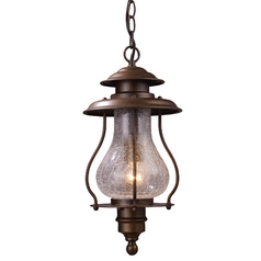 Outdoor Hanging Light with Clear Glass in Coffee Bronze Finish