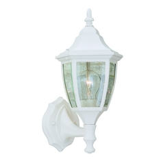 Outdoor Wall Light with Clear Glass in White Finish