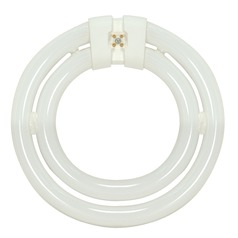 Fluorescent Circline Light Bulb 4 Pin Base 3000K by Satco Lighting