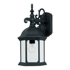 Outdoor Wall Light with Clear Glass in Black Finish
