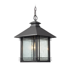 Outdoor Hanging Light with Clear Glass in Graphite Finish