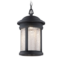 Designers Fountain Prado Oil Rubbed Bronze LED Outdoor Hanging Light