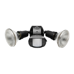 Security Light in Black Finish