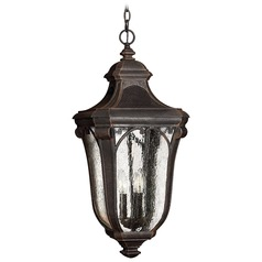 Outdoor Hanging Light with Clear Glass in Mocha Finish