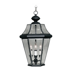 Livex Lighting Georgetown Black Outdoor Hanging Light