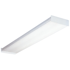 Two-Light Fluorescent Ceiling Light