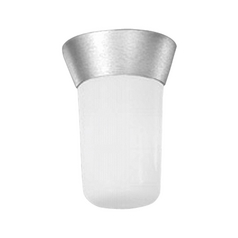 Progress Outdoor Ceiling Light with White Glass