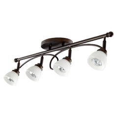 Quorum Lighting Brooks Oiled Bronze Directional Spot Light