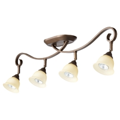 Quorum Lighting Celesta Oiled Bronze Directional Spot Light