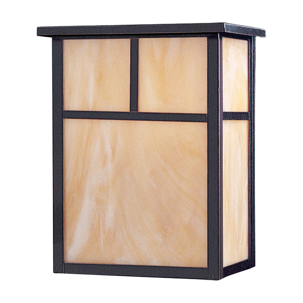 Outdoor Wall Light with Brown Glass in Burnished Finish 86051HOBU Destination Lighting