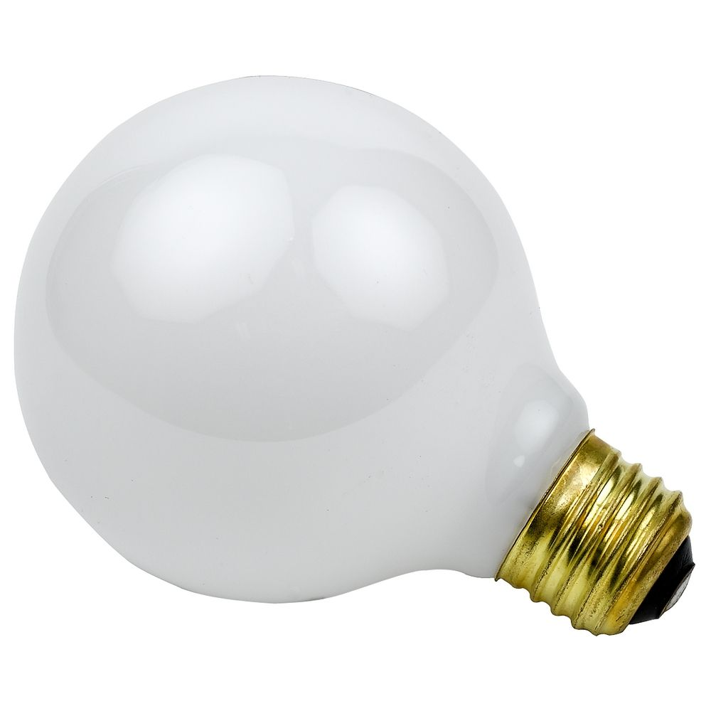 25 Watt Globe Light Bulb With Medium Base 14286 Destination Lighting
