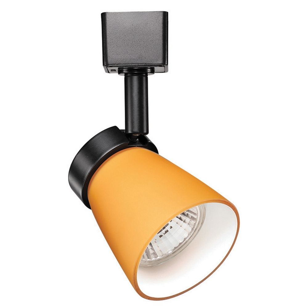 Wac Track Lighting: WAC Lighting Black Track Light With Amber Shade For J