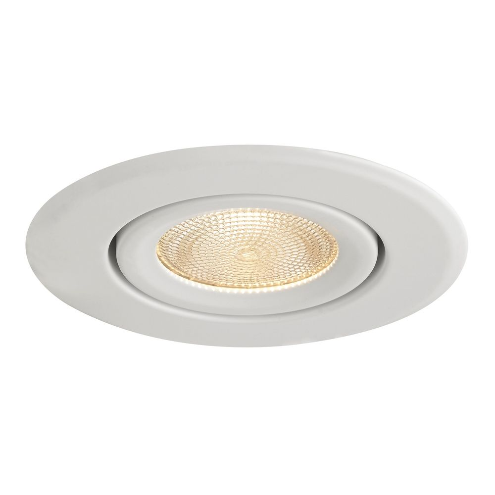 White Adjule Surface Gimbal Par20 Trim For 4 Inch Recessed Cans At Destination Lighting