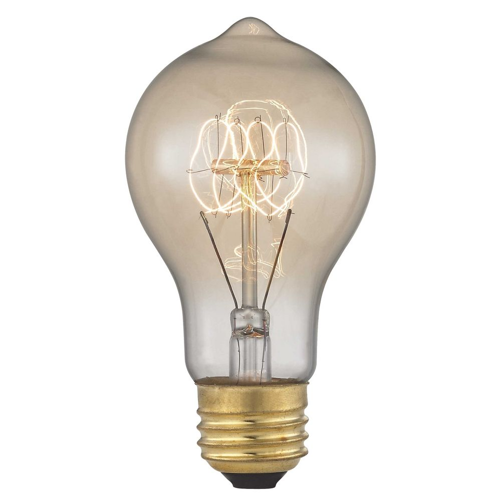 Vintage Edison Carbon Filament Light Bulb 60 Watts 60af19 Filament Destination Lighting