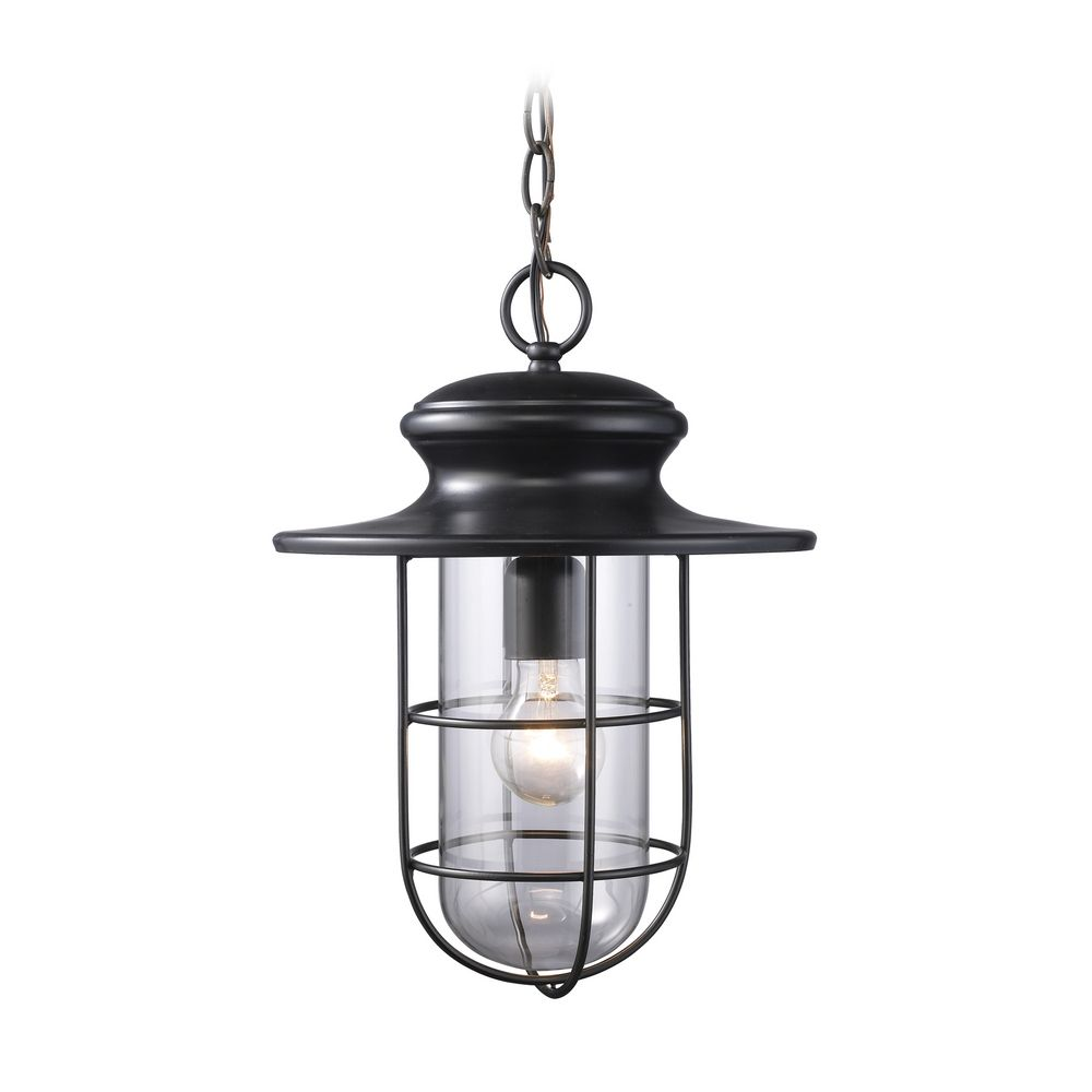 Outdoor Hanging Light with Clear Glass in Matte Black