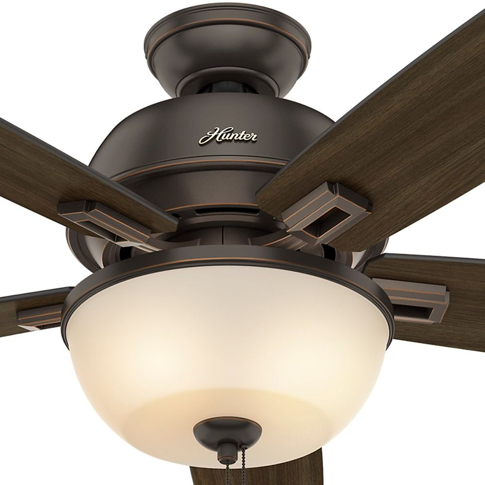 Hunter Fan Company Donegan Bowl Light Onyx Bengal Led Ceiling With At Destination Lighting