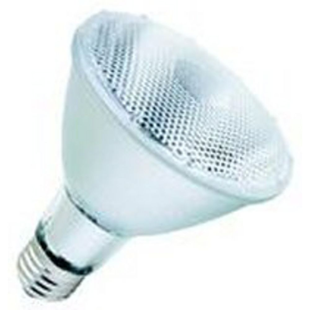 39 watt par30 tungsten halogen reflector light bulb 16156 destination lighting Tungsten light bulbs