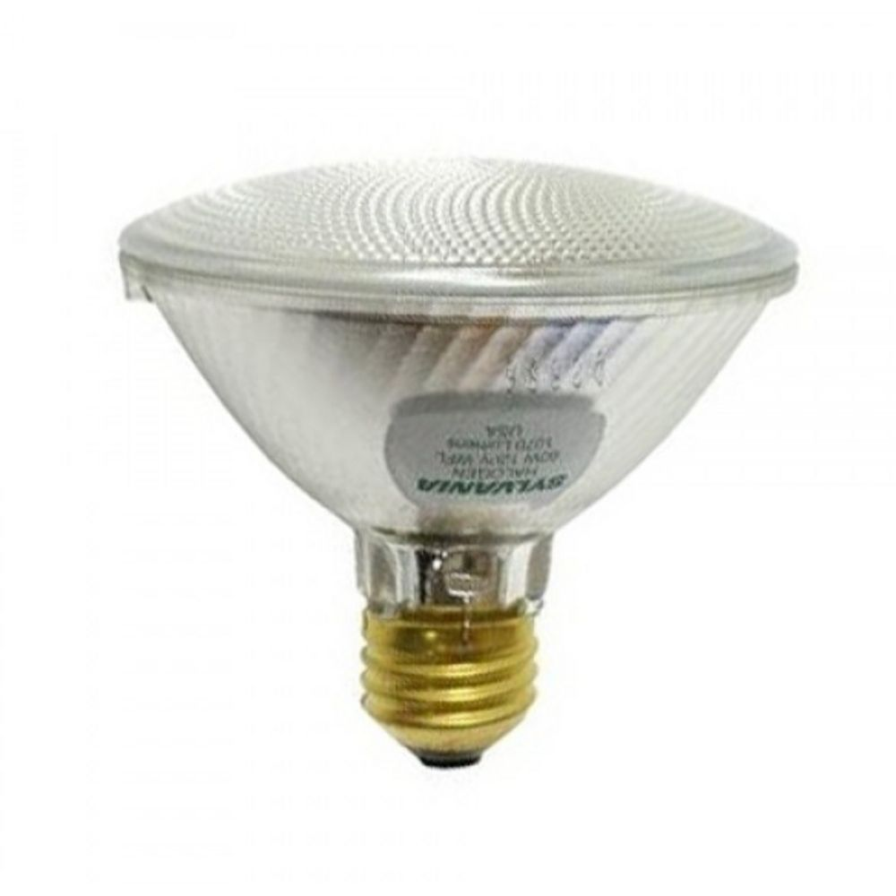60 watt par30 tungsten halogen light bulb with wide beam spread 16129 destination lighting Tungsten light bulbs