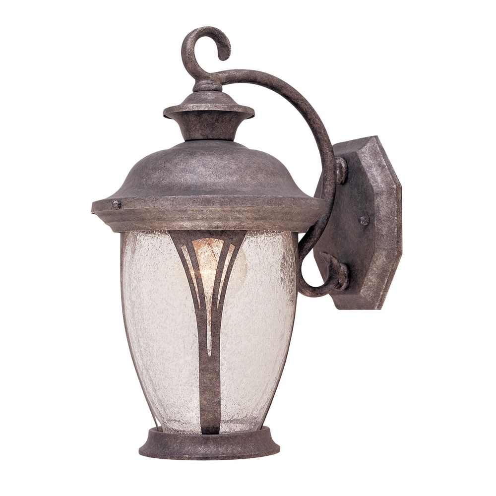 Outdoor Wall Light with Clear Glass in Rustic Silver