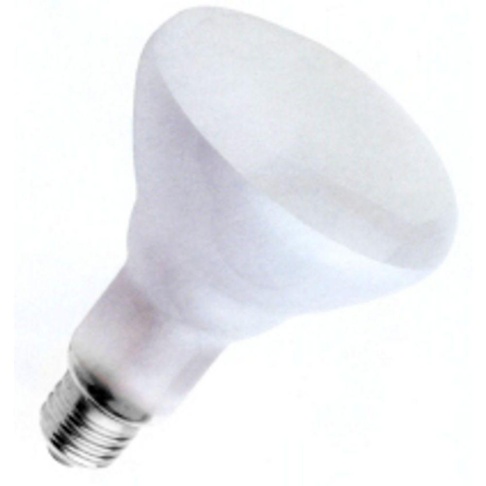 65 Watt Br30 Reflector Light Bulb 15172 Destination Lighting