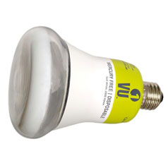 Destination Lighting Shop ESL Bulbs